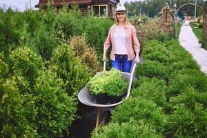 Gärtner bei der Arbeit foto