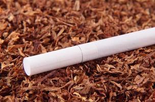 Zigarette foto