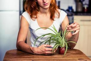 Frau räumt ihre Pflanze auf foto