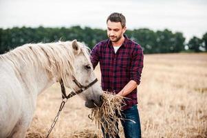 Ich liebe dieses Pferd! foto