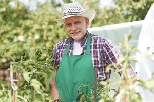 Porträt des männlichen Bauern auf dem Feld foto