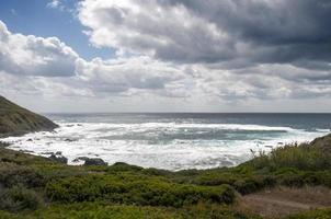 Küstenkörper foto