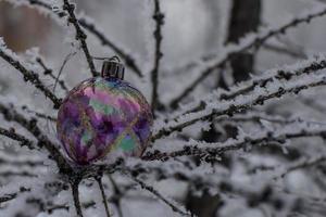 Weihnachtsbaumspielzeug auf einem schneebedeckten Ast