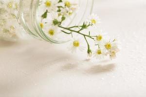 süße Blumen foto