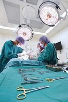 Gruppe von Tierarztchirurgie im Operationssaal foto