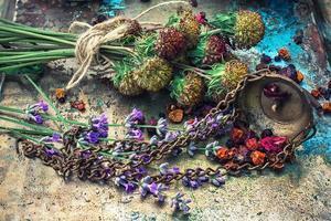 Pflanzenheilkunde foto