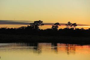 Sonnenaufgang im Dschungel.