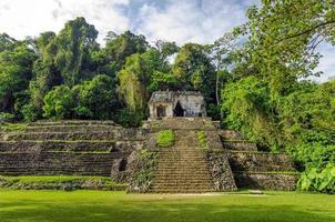 alter Tempel und Dschungel