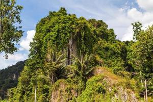 Dschungelinsel foto