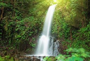 kleiner Wasserfall im Dschungel foto