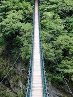 Brücke in den Dschungel