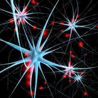Nervenzellen - 3d gerenderte Illustration foto