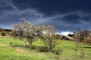 wenn der Sturm kommt foto
