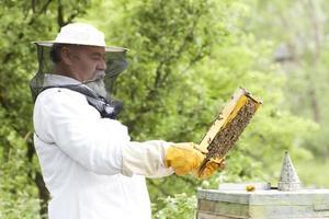 Imker, der mit Bienen arbeitet foto