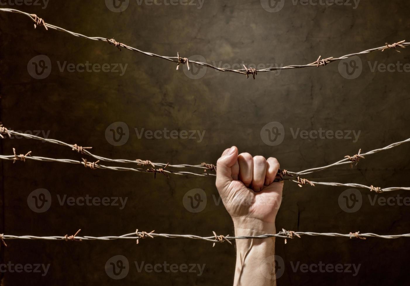 hand bakom taggtråd foto
