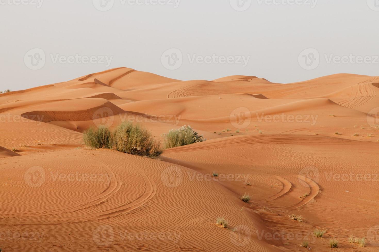 arabiska öknen foto