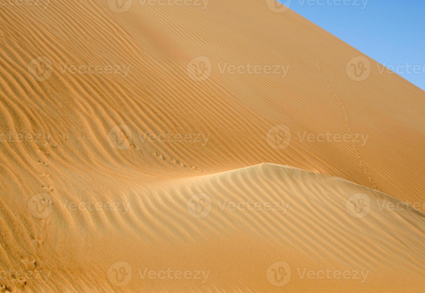 liwa öken sanddyner foto