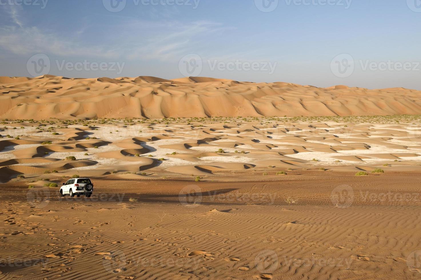 abu dhabi öknen foto