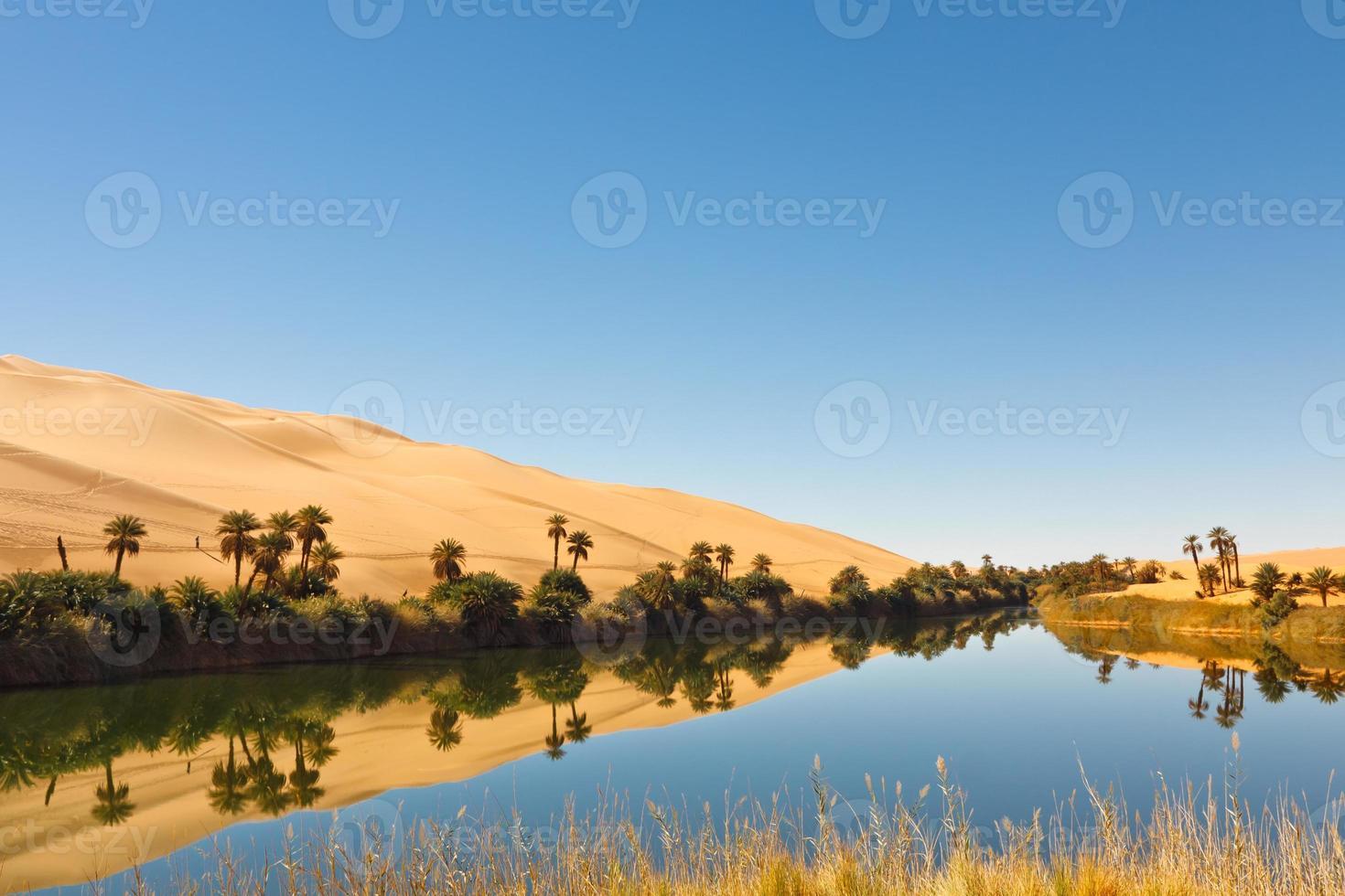 umm al-ma sjö - ökenoas, sahara, libya foto