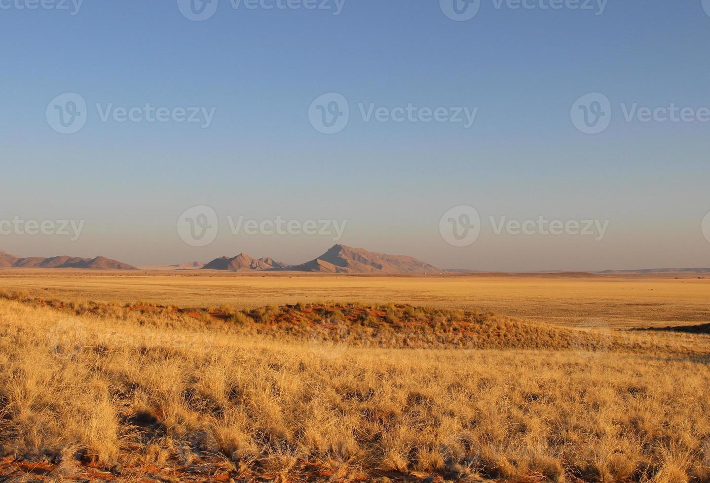 namibiska öknen foto