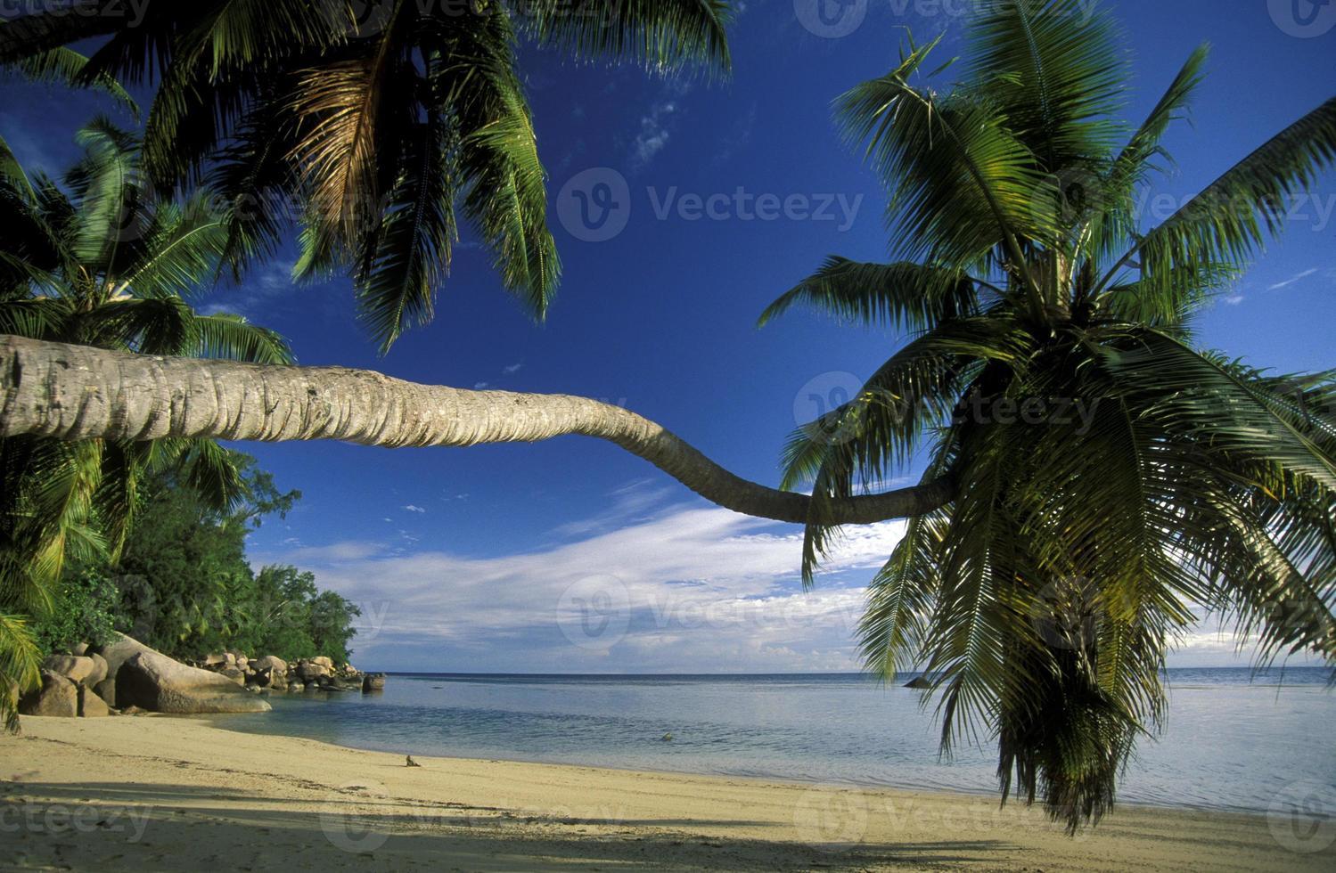 Seychellerna foto