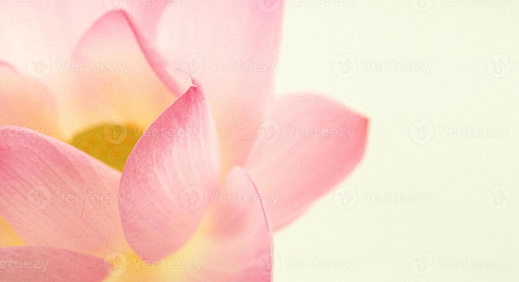 söt färg lotus i mjuk och oskarp stil foto