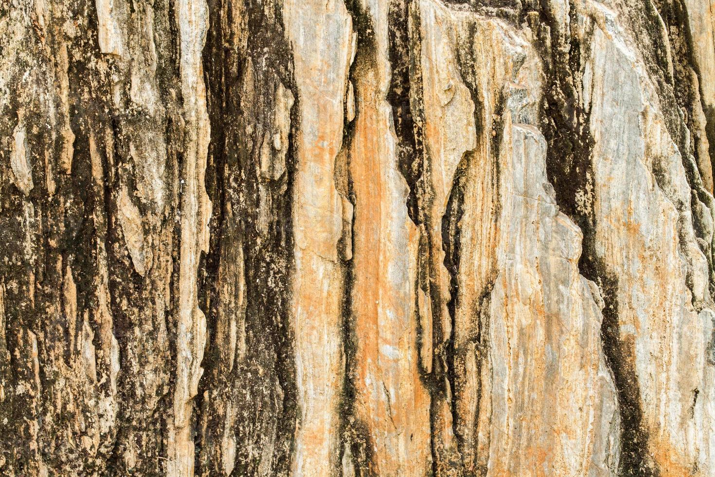 ytan på grungstenbakgrunden. foto