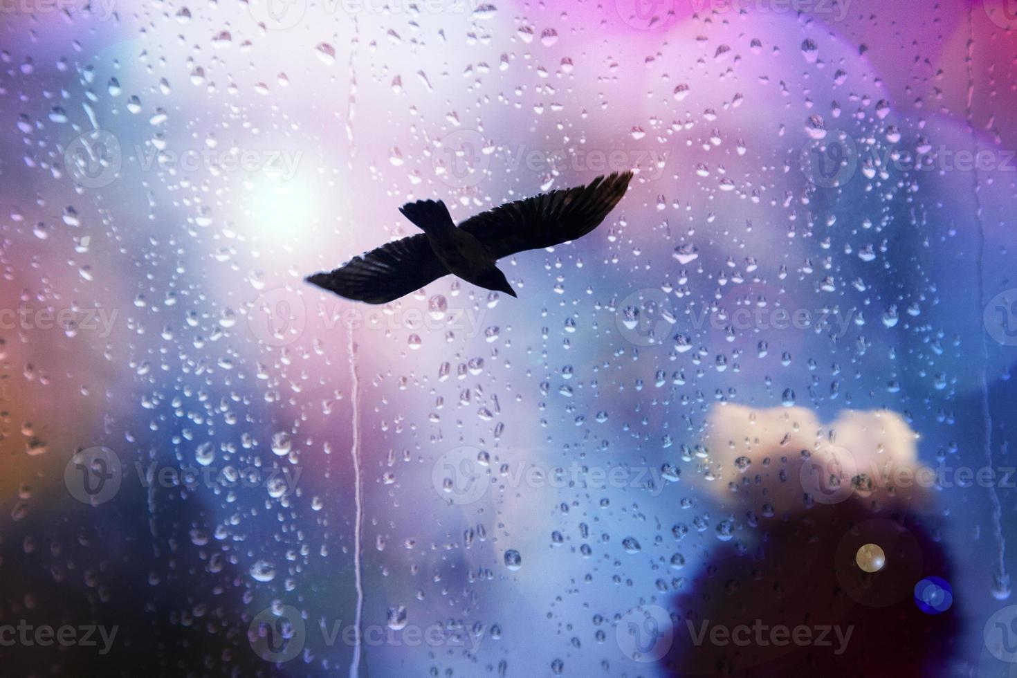 fåglar som flyger och abstrakt himmel, vårbakgrundsabstrakt foto