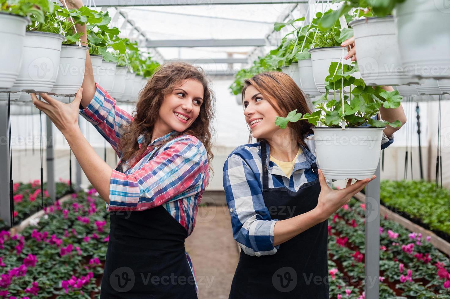 blomsterhandlare kvinnor i växthus. foto