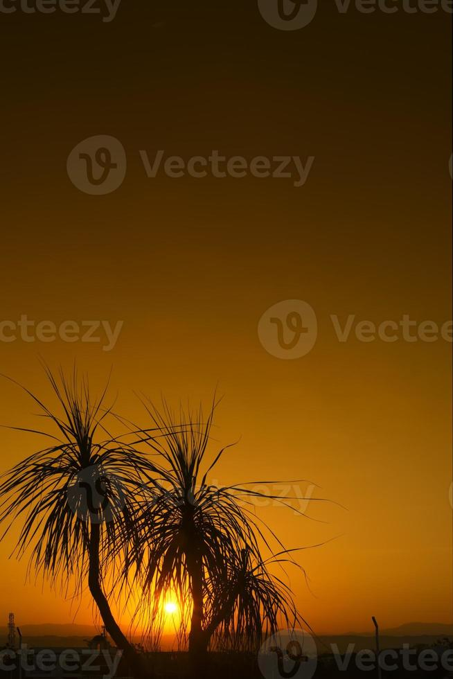 lyxhotell soluppgång foto