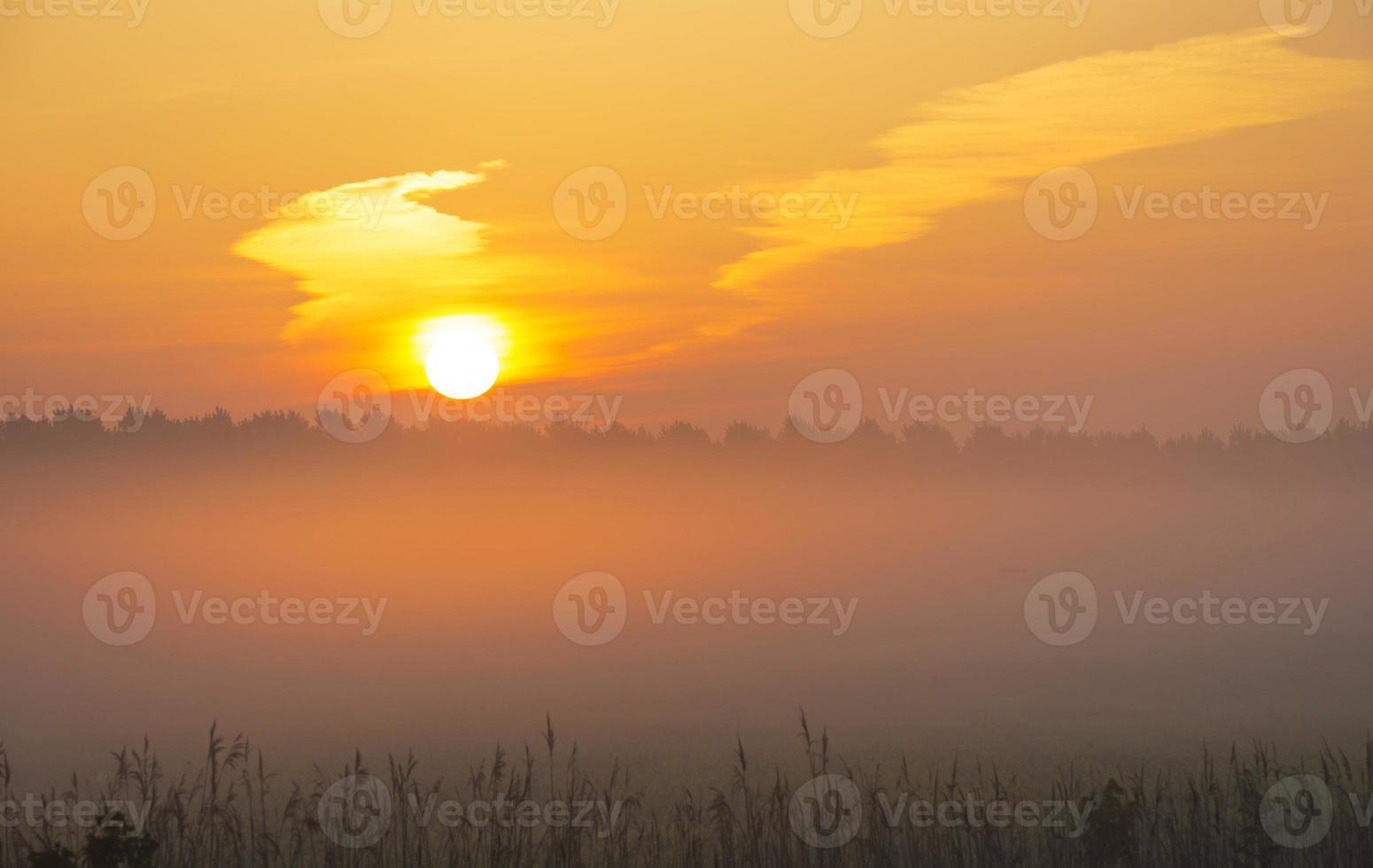 soluppgång över ett dimmigt landskap på våren foto