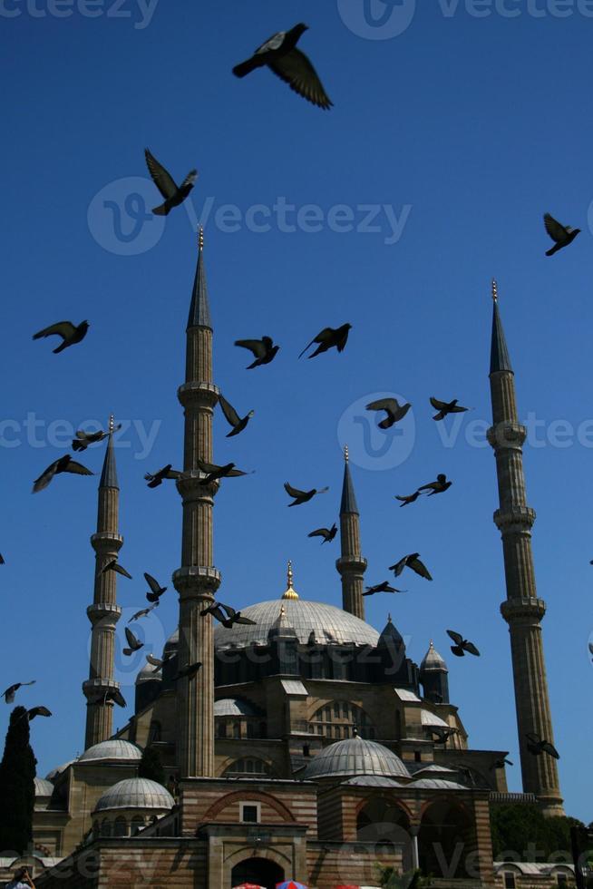 selimiye moské / edirne / kalkon foto