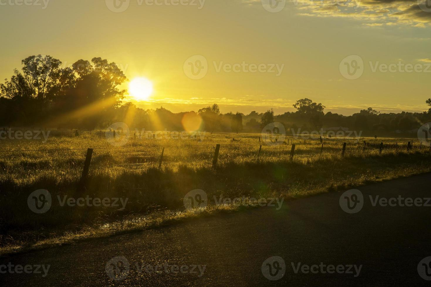 vägsidan av horisonten vid solnedgången foto