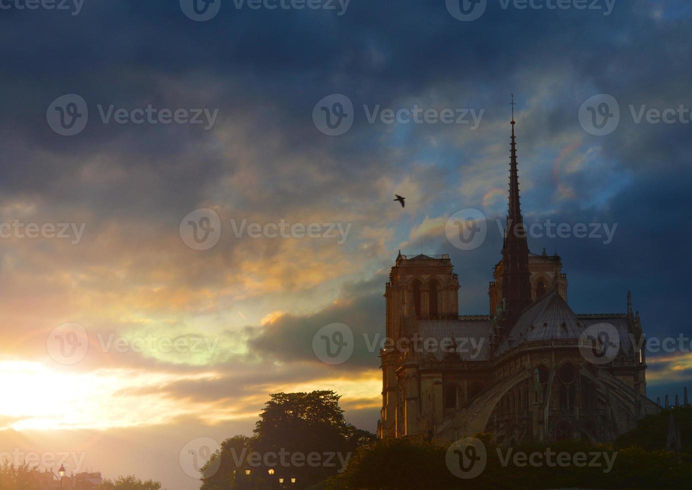 notre dame de paris i skymningen, Frankrike. foto