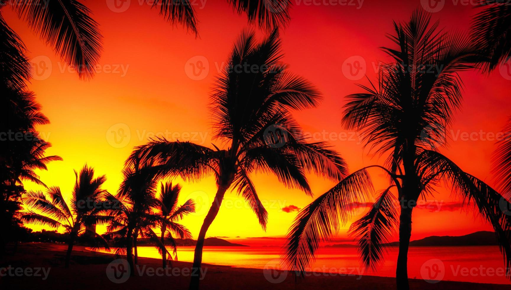 palms silhuetter på en tropisk strand vid solnedgången foto