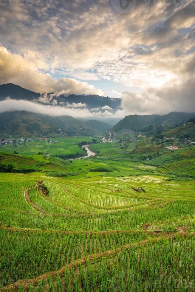 risfält på terrasserad i rainny säsong i Vietnam. foto