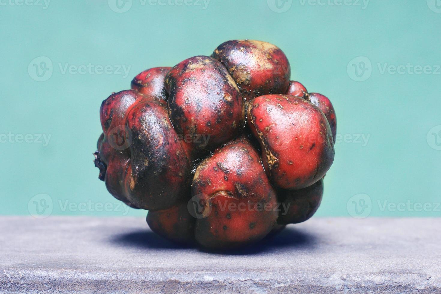 peruansk potatis foto