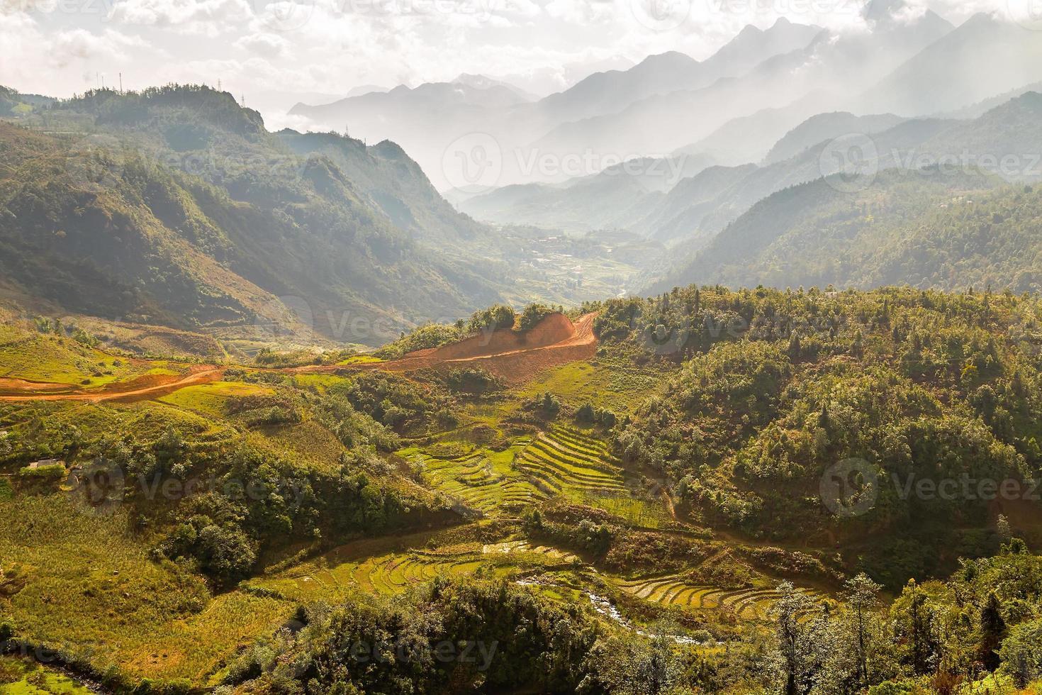 risfält på Vietnam foto