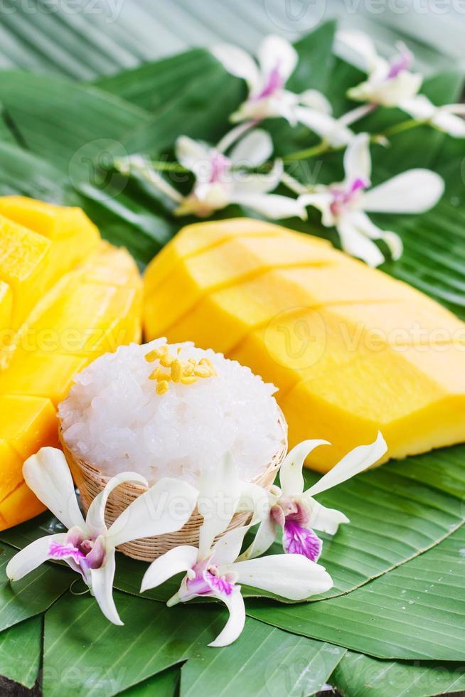 mango med klibbigt ris foto