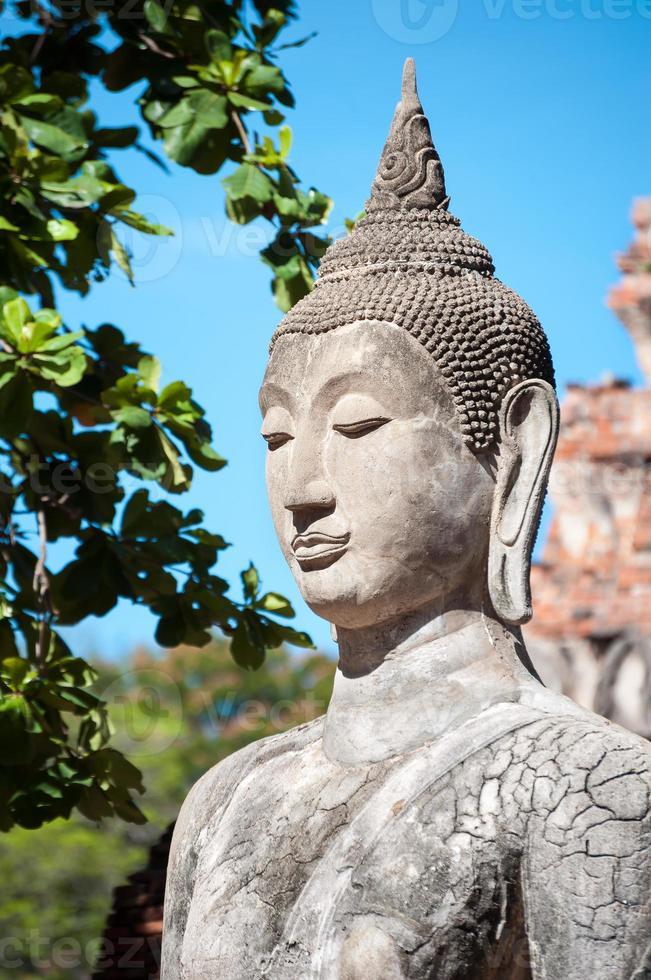 närbild av sten Buddhastatyn på wat mahathat, ayutthaya, Thailand foto