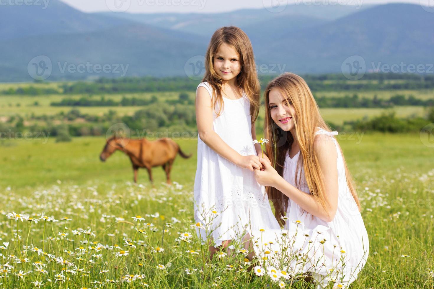 två vackra systrar på ängen av kamomillar foto