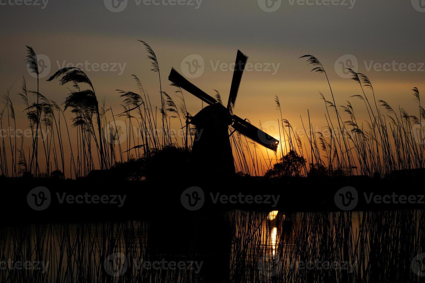 holländsk väderkvarn vid solnedgången foto
