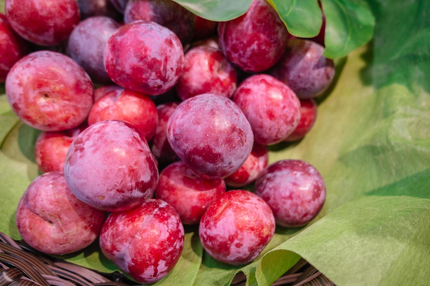 organiska röda plommon i rottingkorg foto