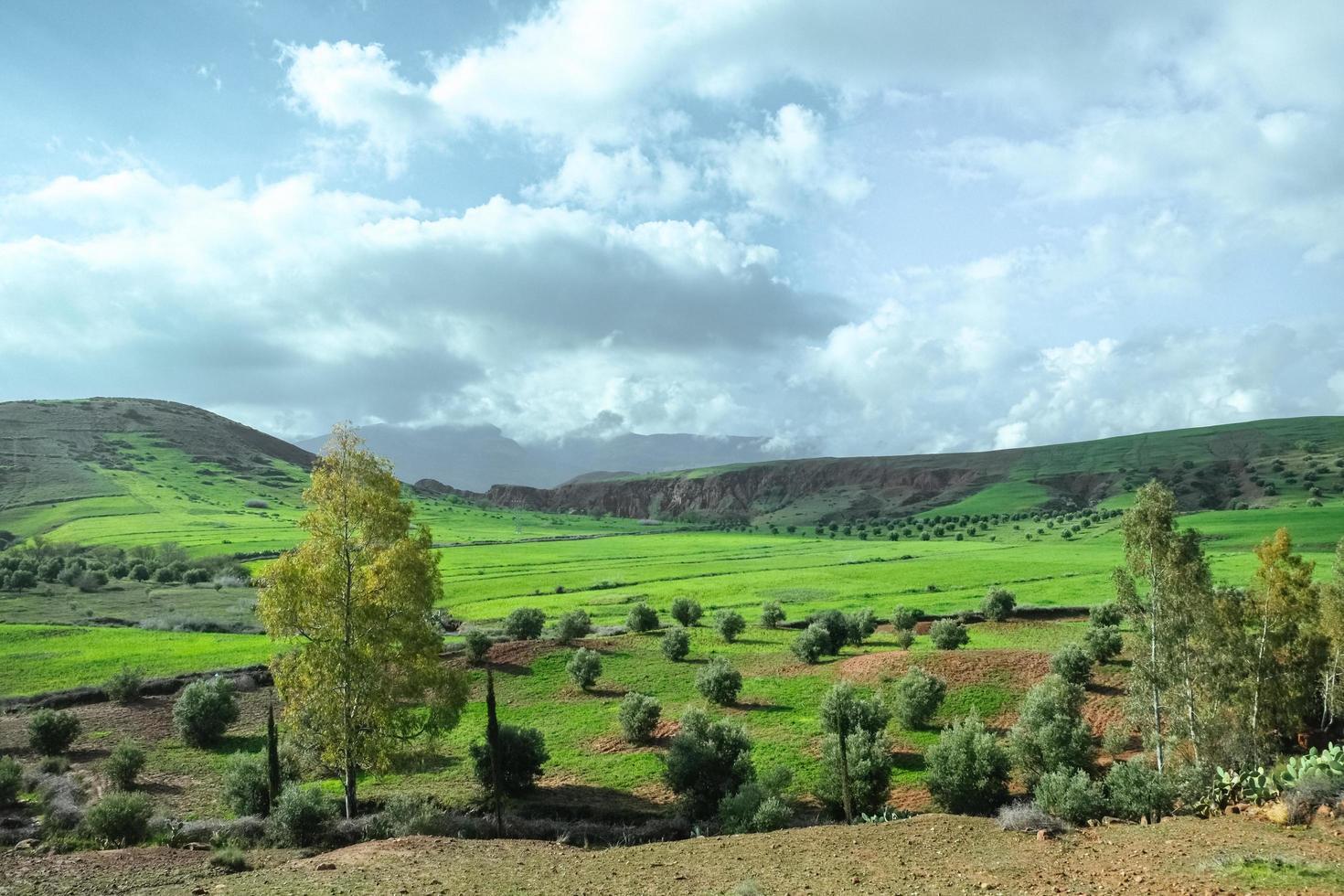 landskapsvy av landsbygdens gröda fält i Marocko foto