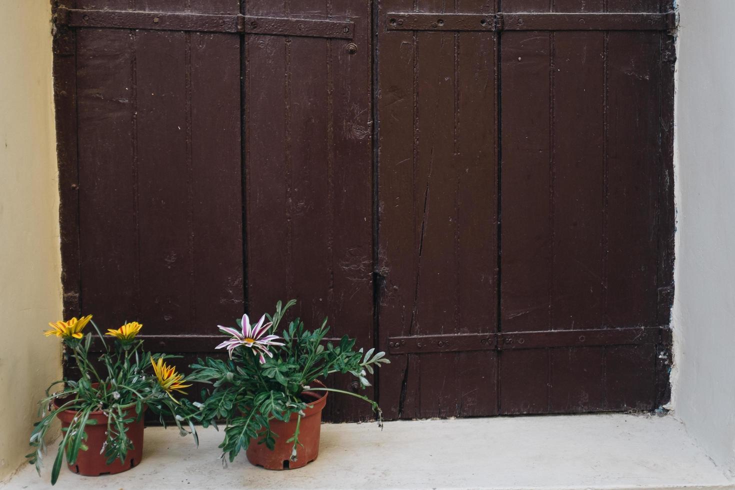 brunt träfönster foto