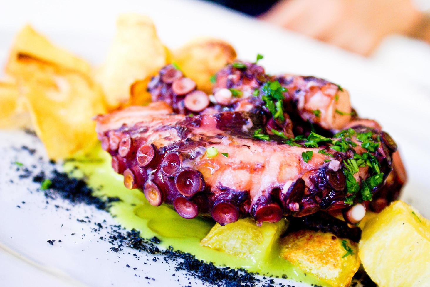 närbild av bläckfisk maträtt foto