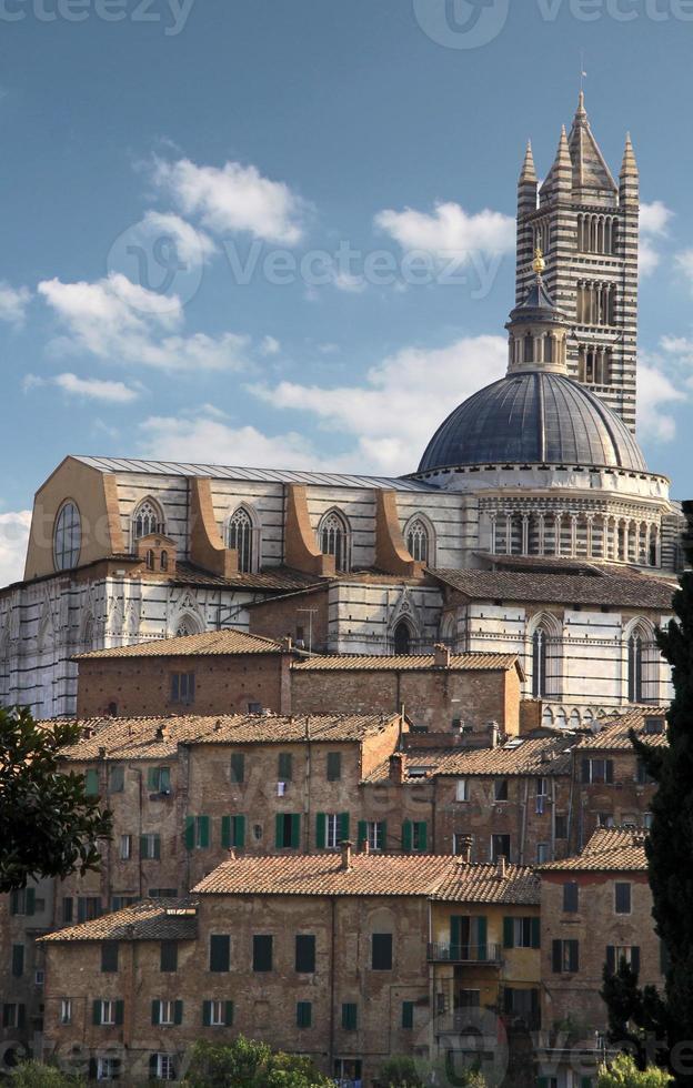 katedralen och gamla staden i Siena foto