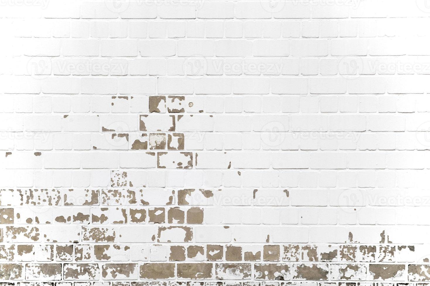 vägg foto
