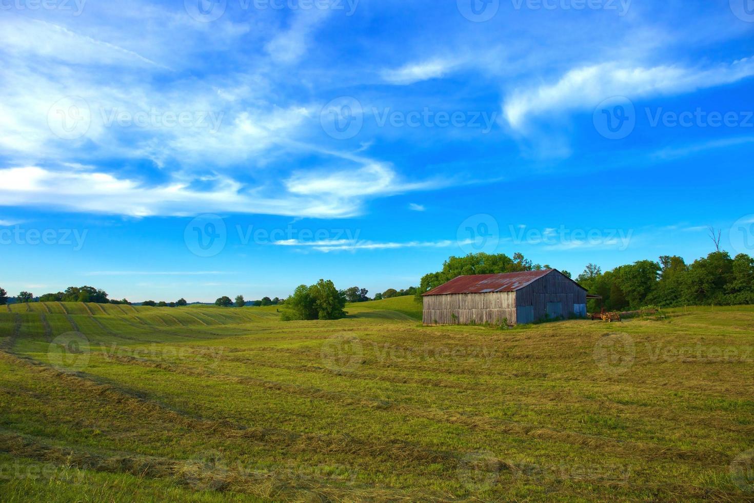 jordbruksmark med fält foto