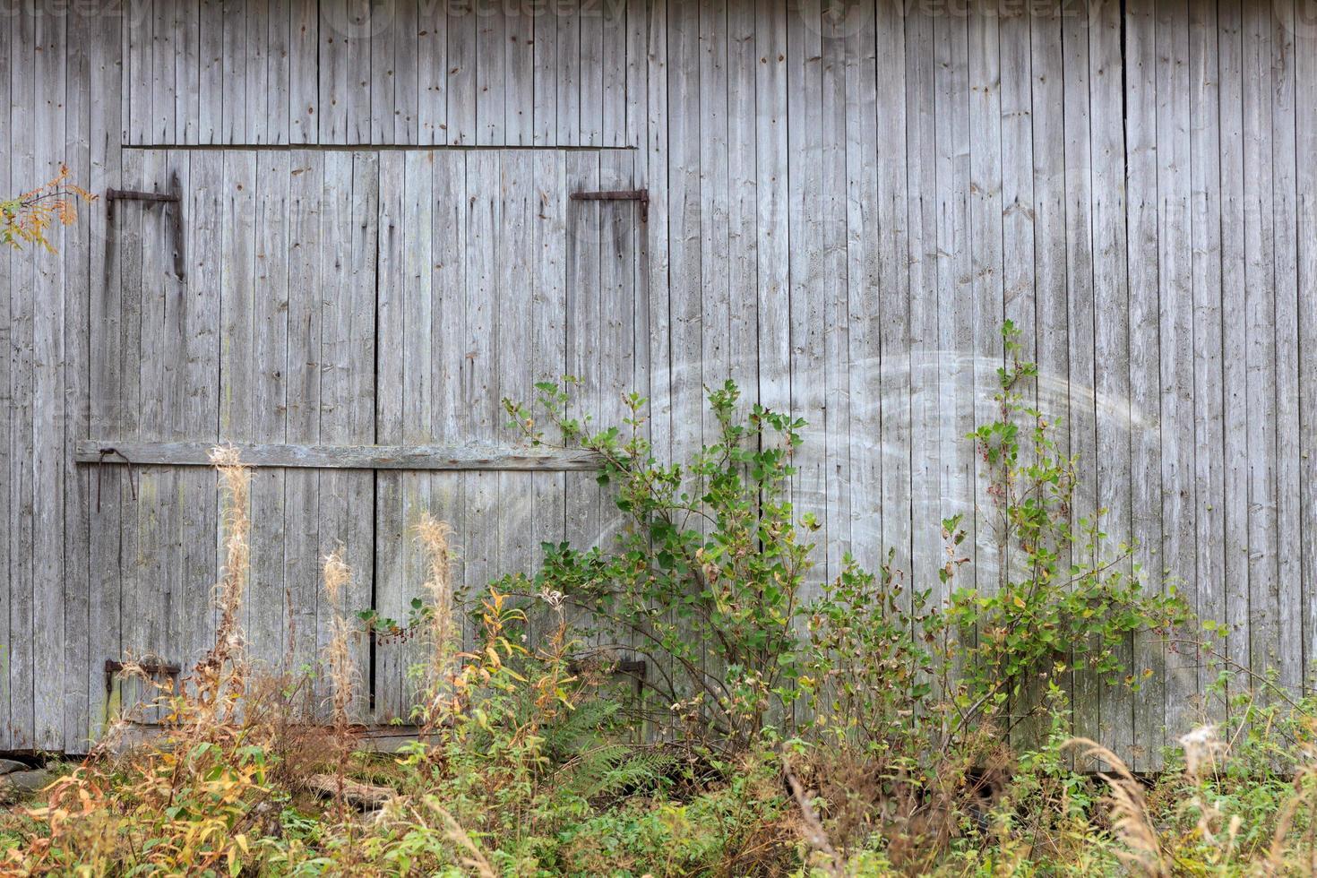 gammal grå ladugårdvägg foto